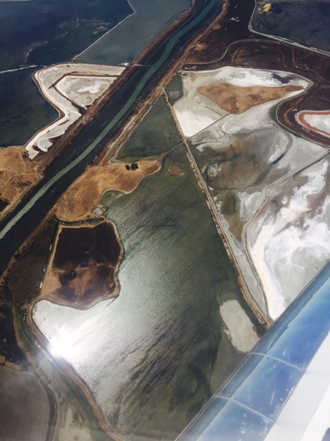 Well kept secret salt ponds San Francisco